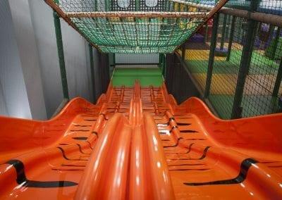 Roar and Explore - Tiger Slide